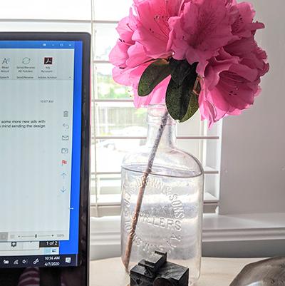 azaleas on desk